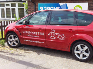 Staggyway tails vehicle graphics