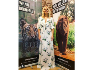 Born Free roller banners